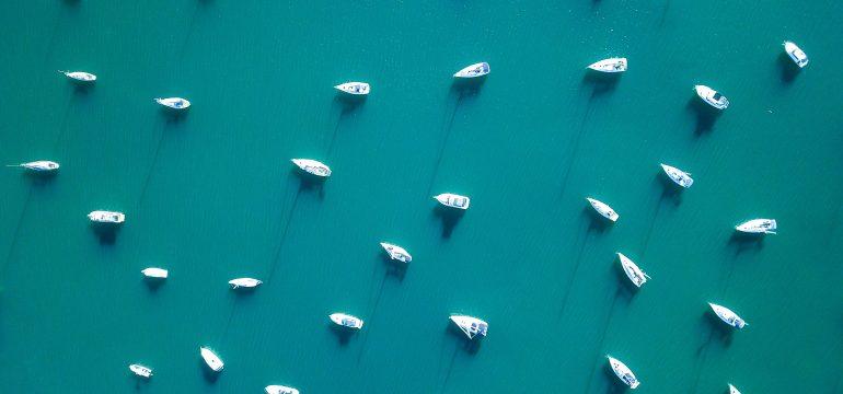Jachty na dziko