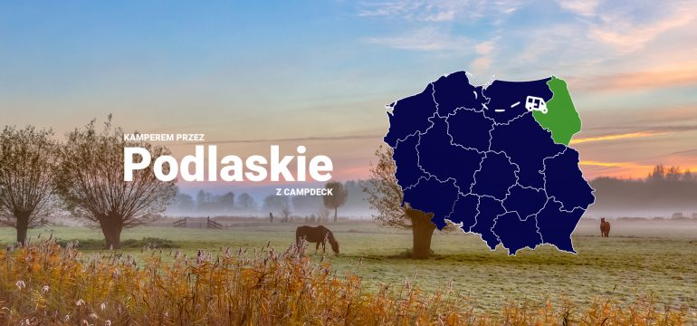 Koń na pastwisku w tle oraz mapa Polski z zaznaczonym województwem podlaskim