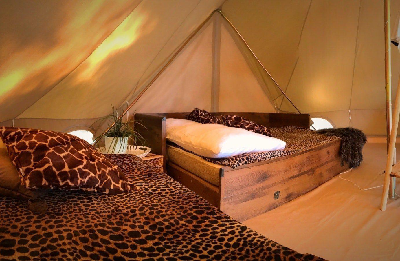 Safari Tent IV